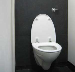es4 wc